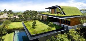 telhado-verde-projeto